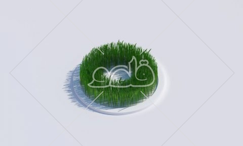 سبزه حلقه متوسط