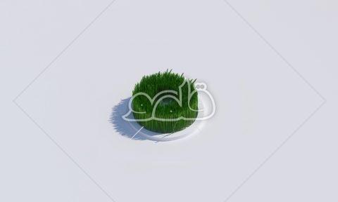 سبزه حلقه کوچکتر