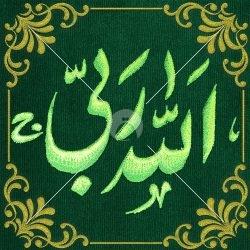 الله ربی